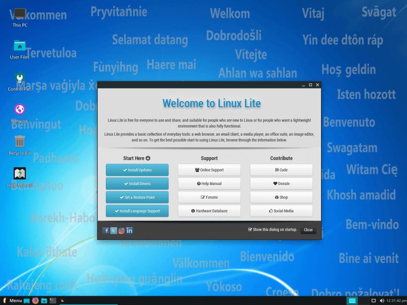 Linux Lite 4.8 download 2