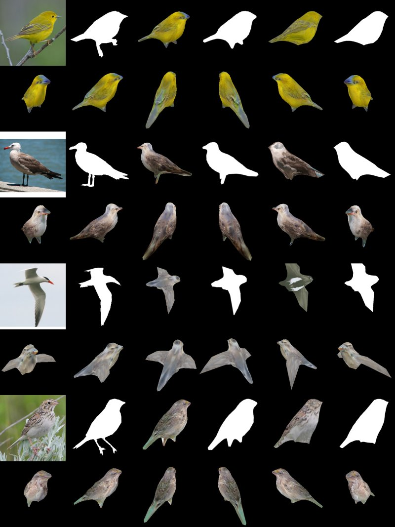 nvidia 3d birds